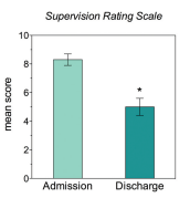 Supervision Rating Scale